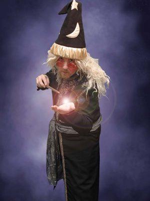 John Clayton as Wizardee